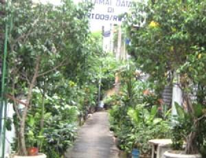 rawajati lingkungan hijau